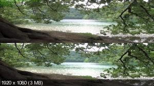 Жизнь: Вода – основа жизни 3Д / Life 3D - Water, the Element of Life  ( by Ash61) Вертикальная анаморфная