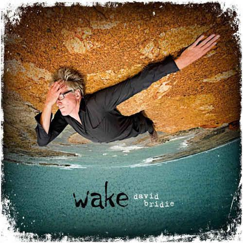 David Bridie - Wake (2013)