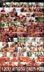 Мамочки свингерши / Mommy Swingers (2013) DVDRip