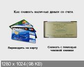 Индивидуальный предприниматель Регистрация и ведение бизнеса для начинающих. Видеокурс (2013)