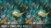 Хищники океанов 3D / Ocean Predators 3D (2013) 3D (HSBS) BDRip 1080p