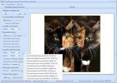 RonyaSoft Poster Printer 3.01.34 Final (2013) РС