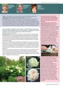 """Подшивка журнала """"Цветочный клуб"""". 11 номеров (январь-ноябрь/2013) PDF"""
