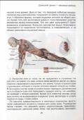 С. Домогацкий. Домашний тренинг - максимум свободы (2012) PDF