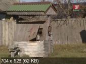 http://i57.fastpic.ru/thumb/2013/1221/c1/dd5fb8349106a80a5c9cc2b245ee52c1.jpeg