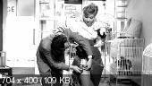 Вексель / La cambiale (1959/DVDRip)