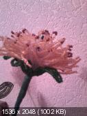 Мои цветочки из бисера 8266689f321194a11be8acb78b8cd22c