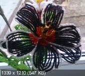 Мои цветочки из бисера 2d06c2ddb47e48861df40be2953a8d51