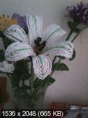 Мои цветочки из бисера Cb698e67c6d2c1d22e2eafc8b9b981d5