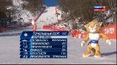 XXII Зимниe Олимпийскиe игры. Горные лыжи. Скоростной спуск. Женщины [HD Спорт 1] [12.02] (2014) HDTV 1080i