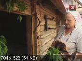 http://i57.fastpic.ru/thumb/2014/0228/2d/7bac7163ba973433992683dbadd0e22d.jpeg