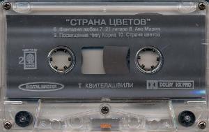 """Серия """"Лучшие гитаристы"""" - Д. Четвергов и Т. Квителашви"""
