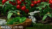 Маша и Медведь [01-41] (2009-2014) HDRip + МР4.HDRip.КПК