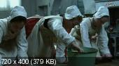 ������ ���� / Miss Julie (1999) HDTVRip | MVO
