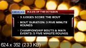 ��������� ������������. MMA. UFC on FOX 14: Gustafsson vs. Johnson (Full Event) (2015) PDTVRip