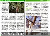 Прелестная дача (№2, февраль-март / 2015)