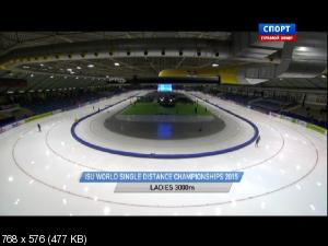 ������������ �����. ��������� ���� 2015 ��������. ��������� ���������. 1-� ���� [12.02] (2015) IPTV