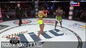 ��������� ������������. MMA. Bellator 133: Shelmenko vs. Manhoef [13.02] (2015) HDTV 1080p