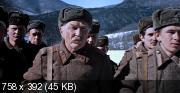 Фронт в тылу врага (1981) DVDRip (AVC)