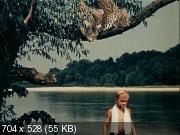 Путешествие к началу времён (1955) DVDRip