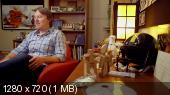 ����� ������ / Big Hero 6 (2014) BDRip 720p | �������������� ���������