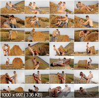 TeenDorf - Dominika - Cute Young Girl Fucked In A Field [HD 720p]