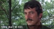 Гнездо шершней (1970) BDRip