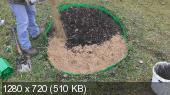 Выращиваем и размножаем крупноплодную клюкву (2014) Видеокурс