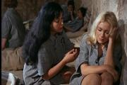 99 женщин / Der hei?e Tod (1969) DVDRip-AVC