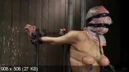 video-massazh-zhenskoy-siski